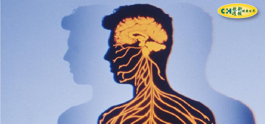 腦瘤致命性強 做好認知防腦內不定時炸彈